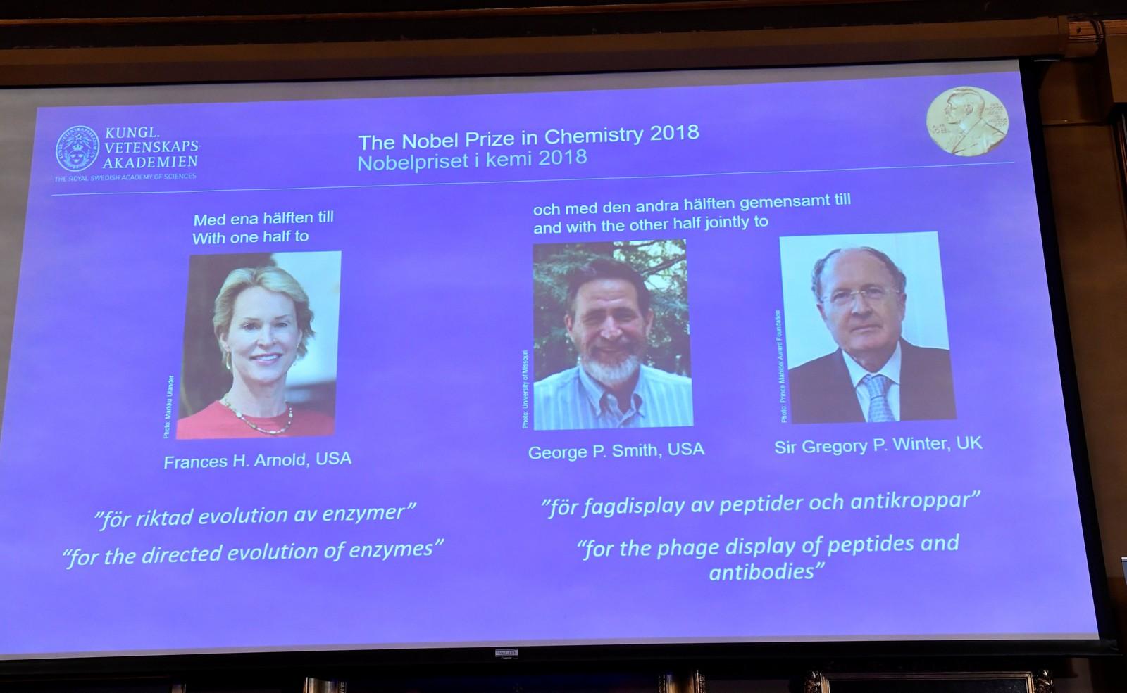 Nobel de Química 2018:  trio vencedor desenvolveu proteínas com princípios da evolução