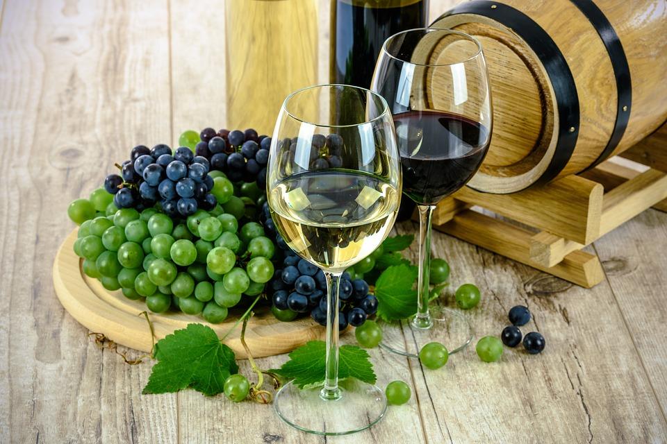 VINHOS: da uva à harmonização final